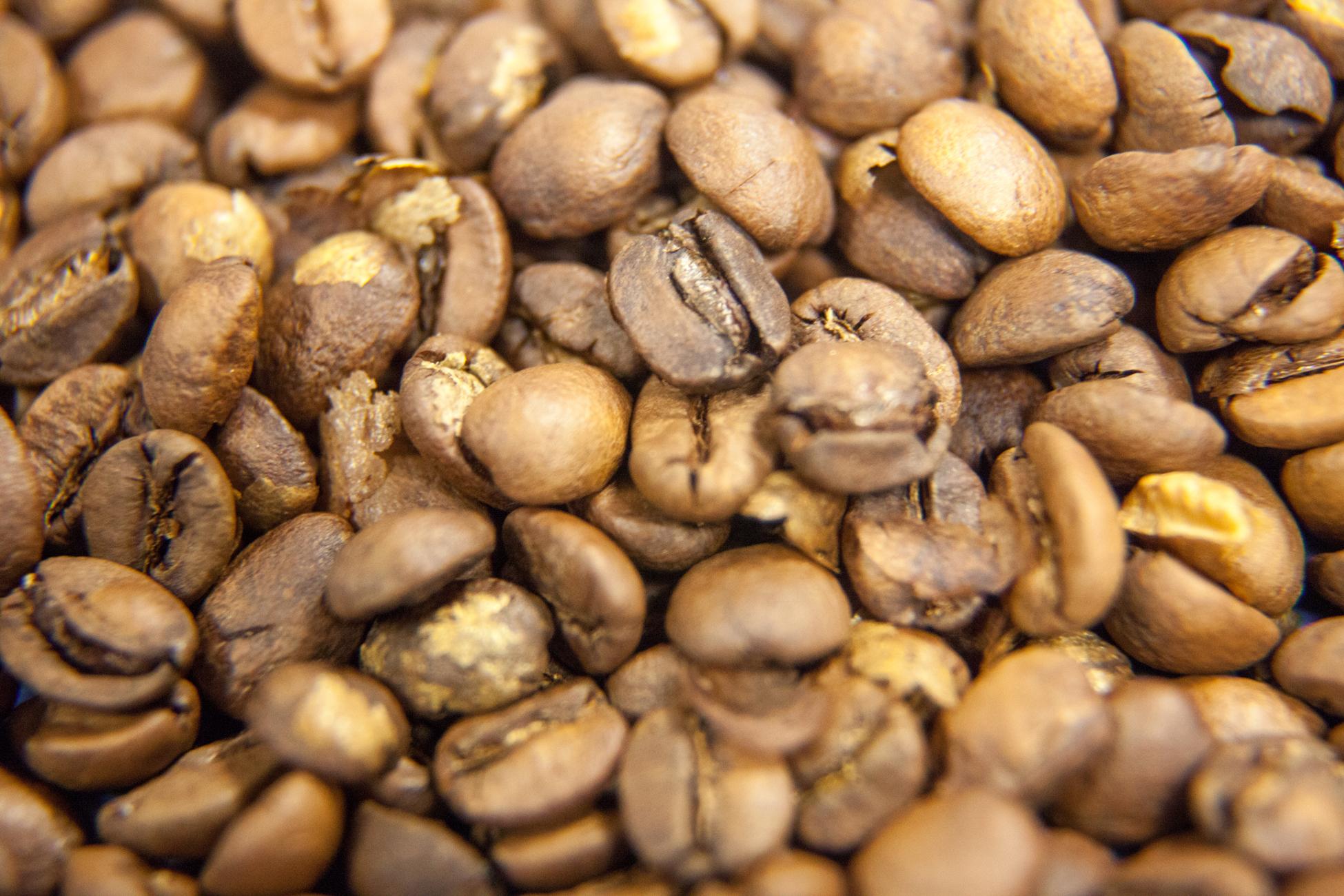 """Le café tout juste torréfié et doré à souhait. Ce degré de torréfaction s'appelle """"Robe de moine"""" ou """"Light French""""."""