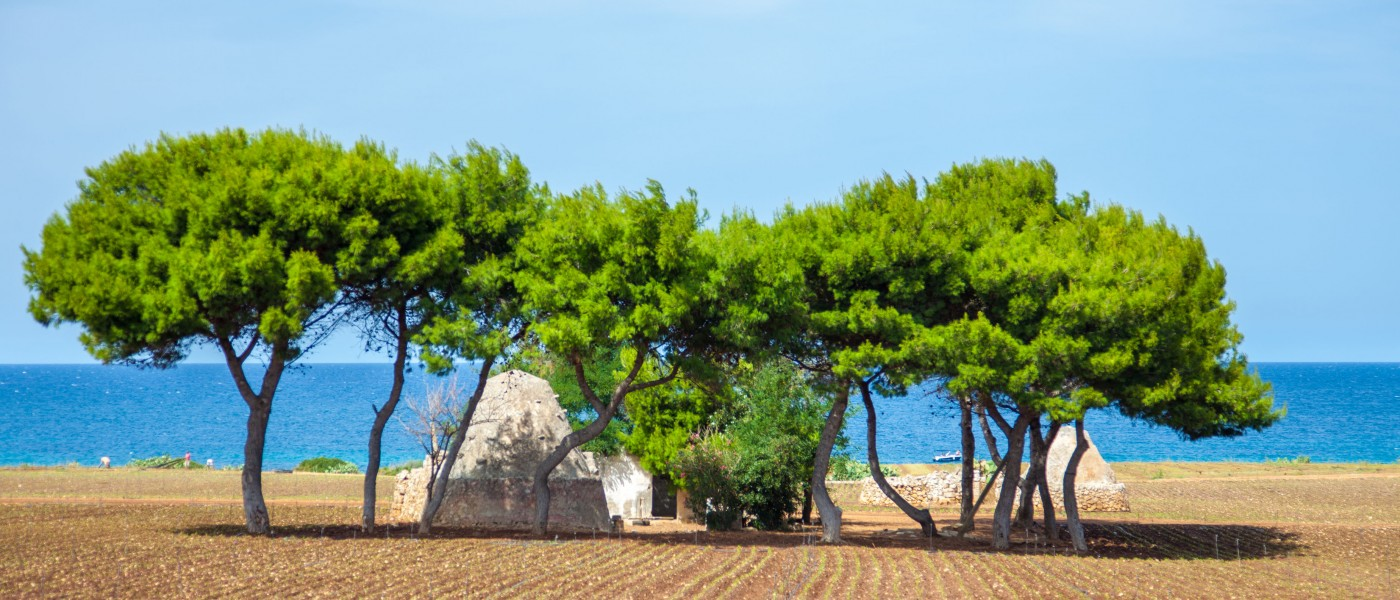 _MG_6470-pouilles-italie-puglia-copyright-maeva-destombes