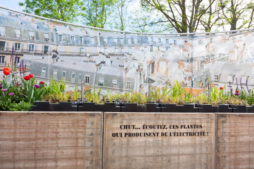 festival-des-jardins-chaumont-sur-loire-2016-copyright-maeva-destombes_MG_9238