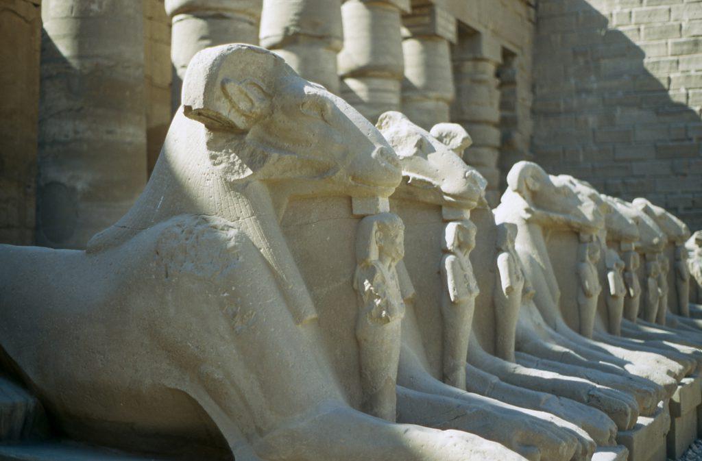 egypte-louxor-louqsor-copyright-maeva-destombes-béliers2