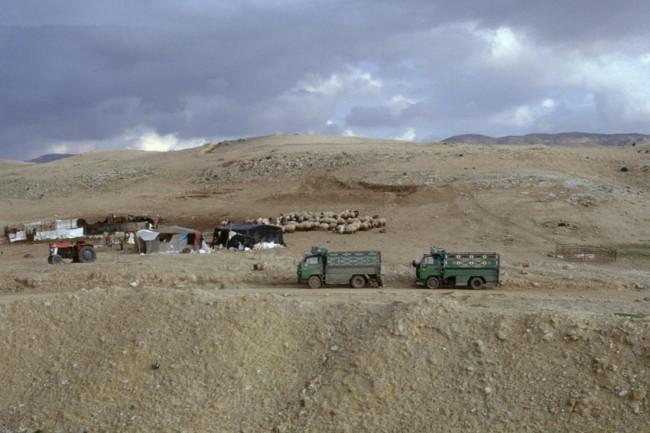 Jordanie. PŽriphŽrie de Amman. BŽdouins vivant sous des tentes.