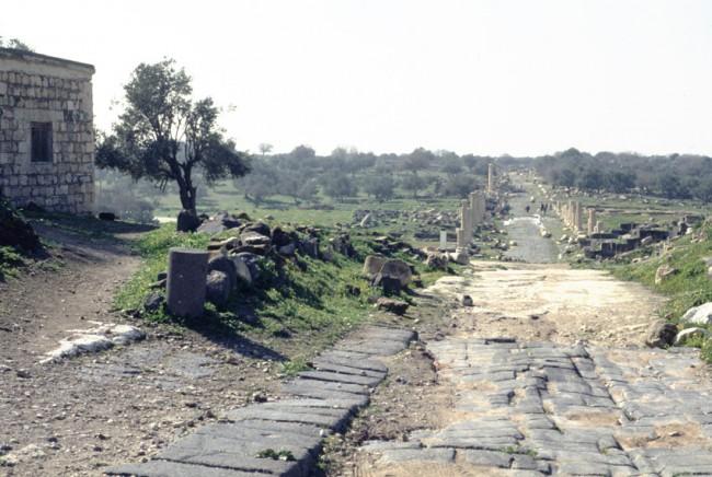 Jordanie. Madaba. Le parc archŽologique. Le Cardo.