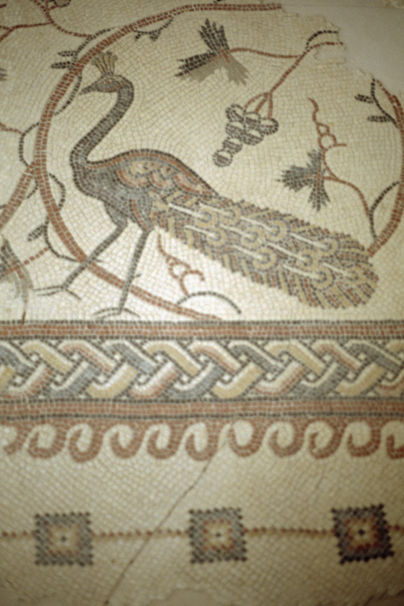 Jordanie. Madaba. Les mosa•ques byzantines les plus cŽlbres.