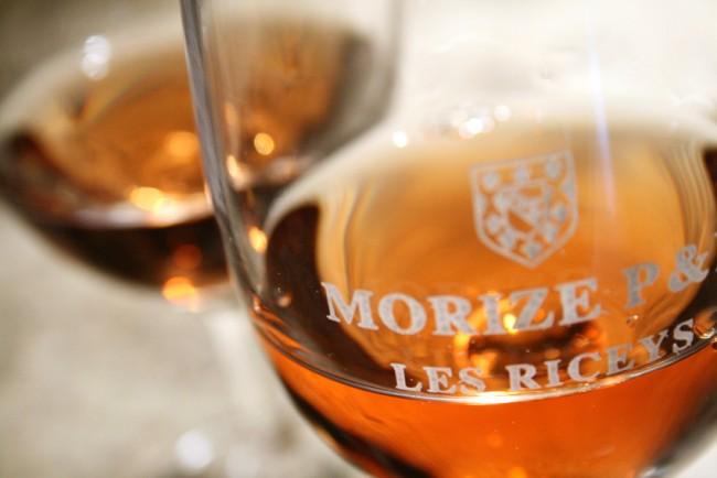 Copyright Maeva Destombes Aube Champagne IMG 6484 2