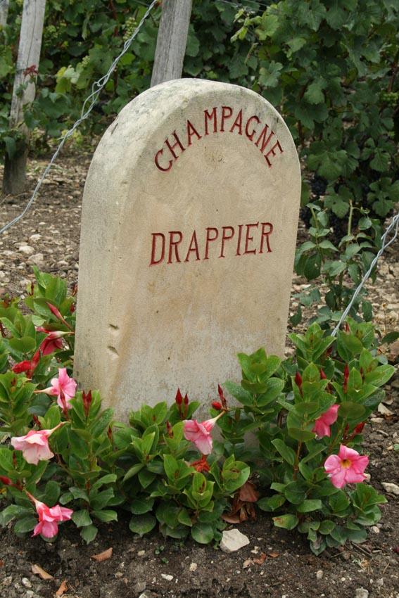 Copyright Maeva Destombes Aube Champagne IMG 6735