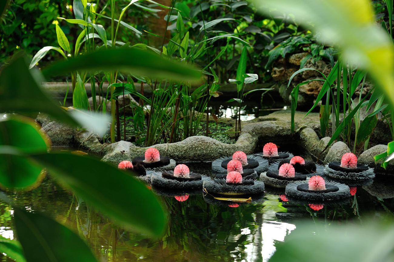 Hybridations l 39 exposition onirique d 39 alexis tricoire au - Exposition dinosaures jardin des plantes ...