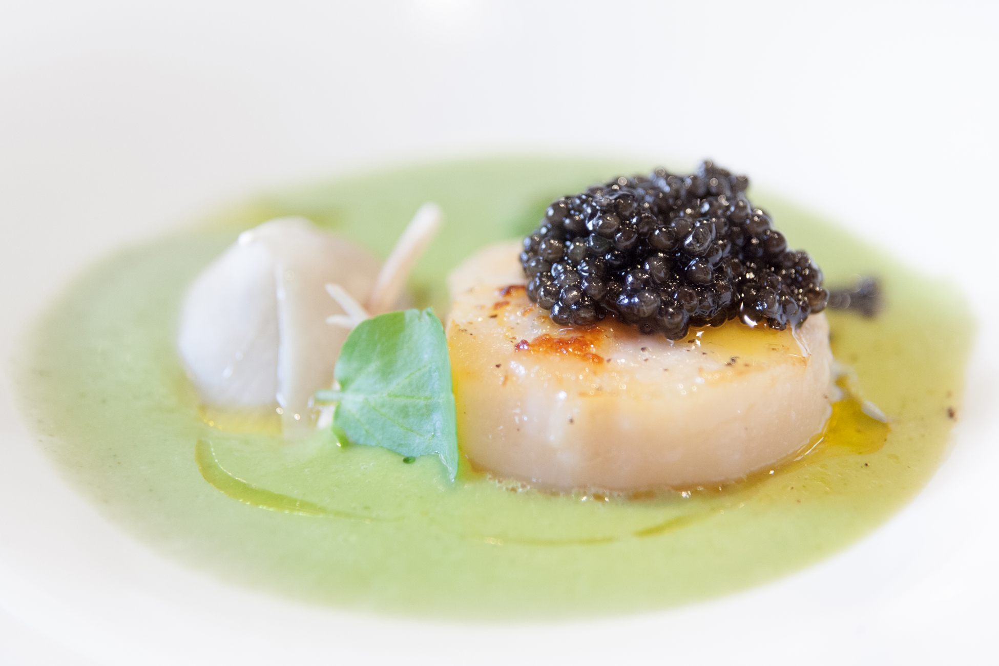 caviar-akitania-aquitaine-sturgeon-copyright-maeva-destombes-8436