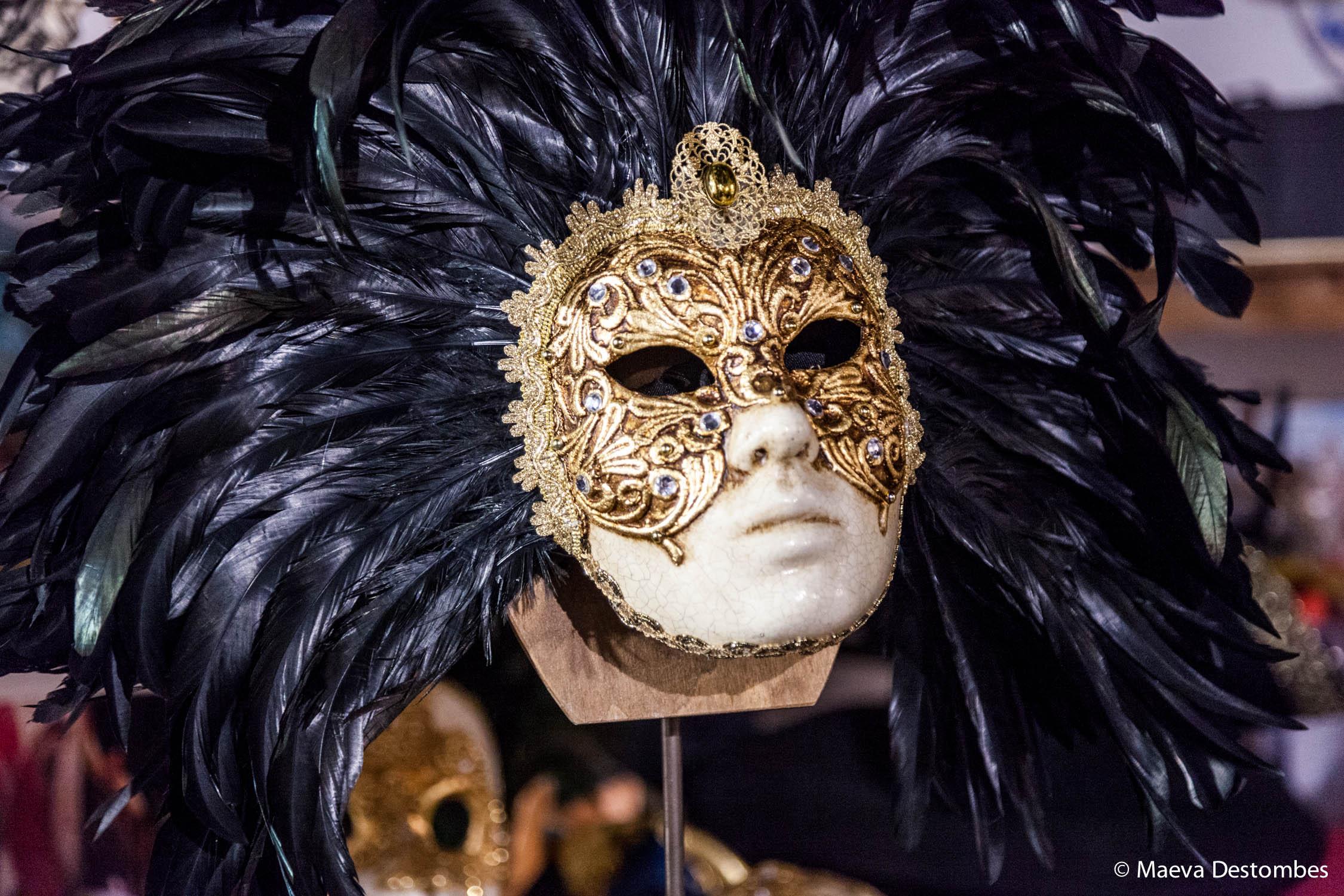 Un masque à plume au carnaval de Venise