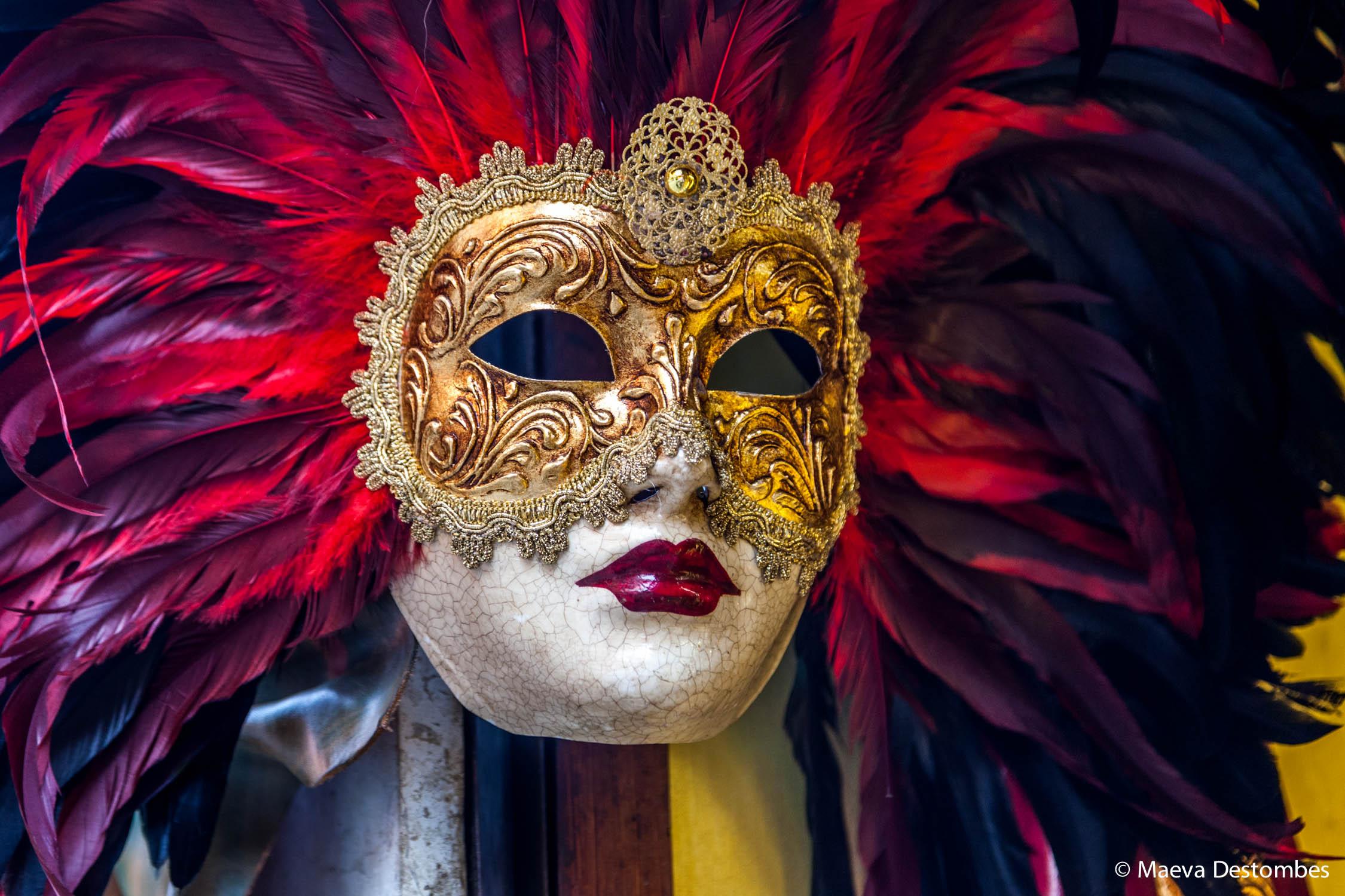 Un masque à plumes au carnaval de Venise
