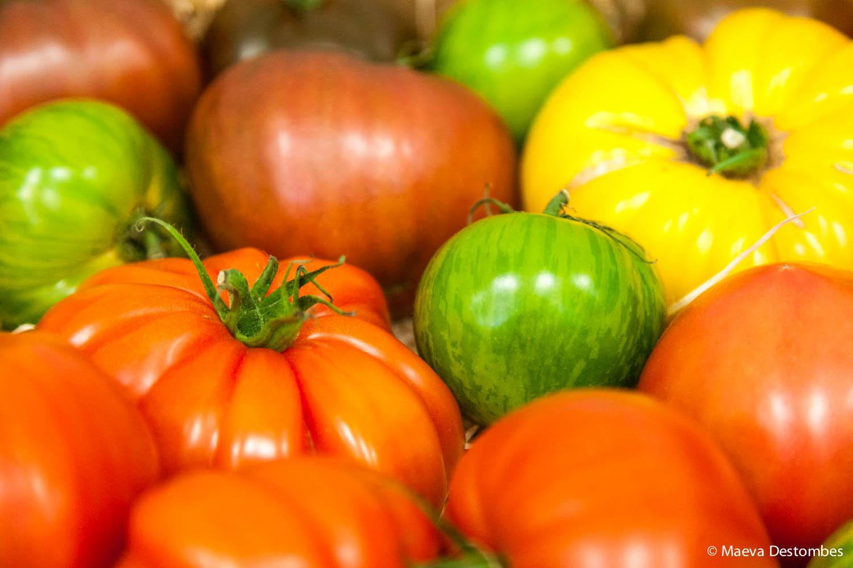 Une boîte remplie de tomates de toutes les couleurs.